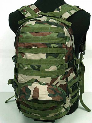 Molle Patrol FSBE Assault Backpack Camo Woodland
