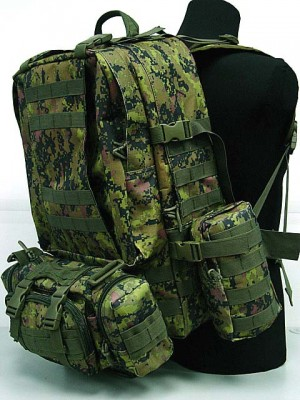 CamelPack Tactical Molle Assault Backpack CADPAT Digital Camo
